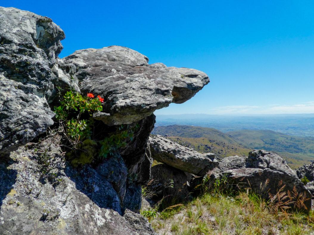 Madagascar - Mont Ibity 7