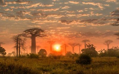 MADAGASCAR – Immersion solidaire : des Hauts Plateaux aux baobabs (12 jours)