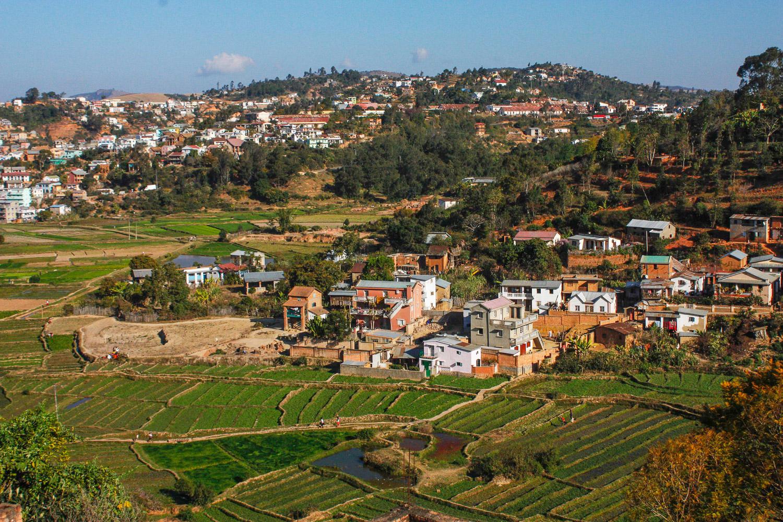 Fianarantsoa - rizières