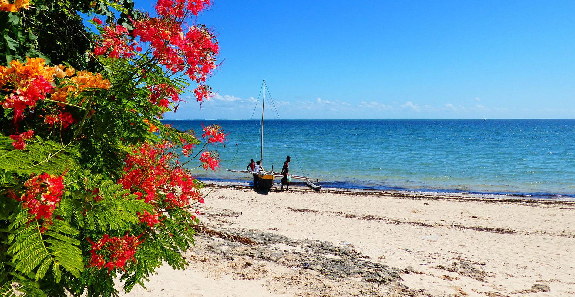 Mangily - fleurs et bateau
