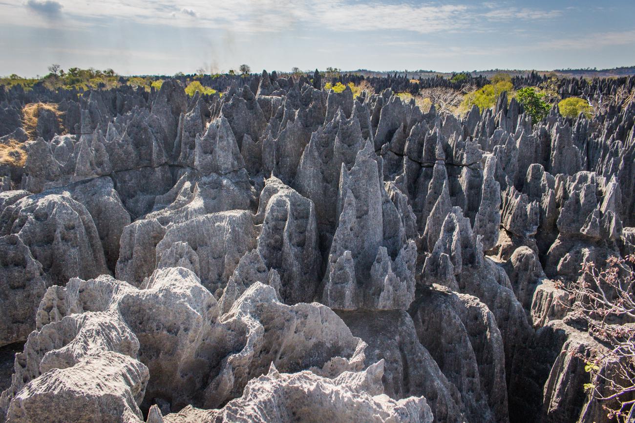 Tsingy de Bemaraha - Au sommet