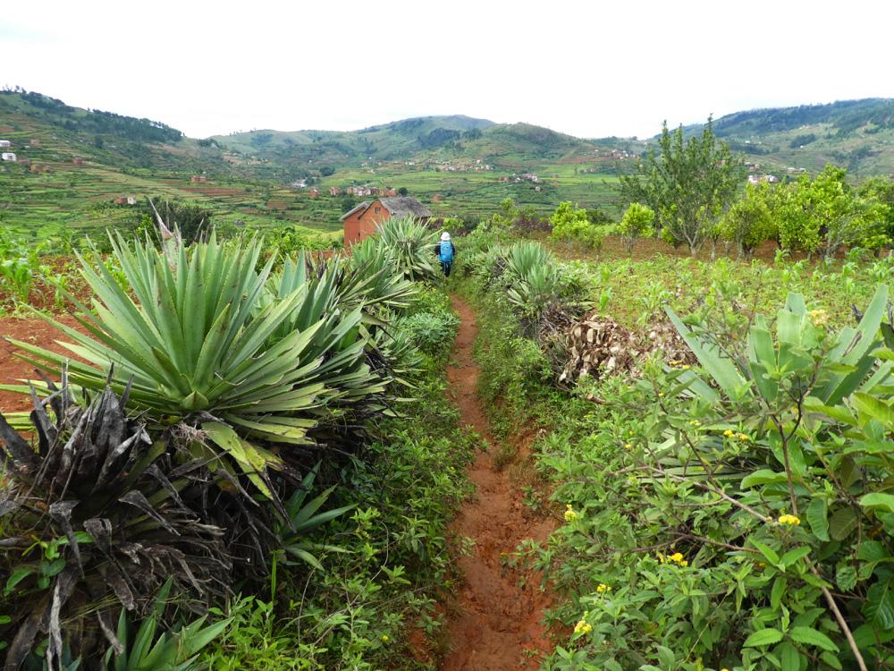 Madagascar - Ambositra