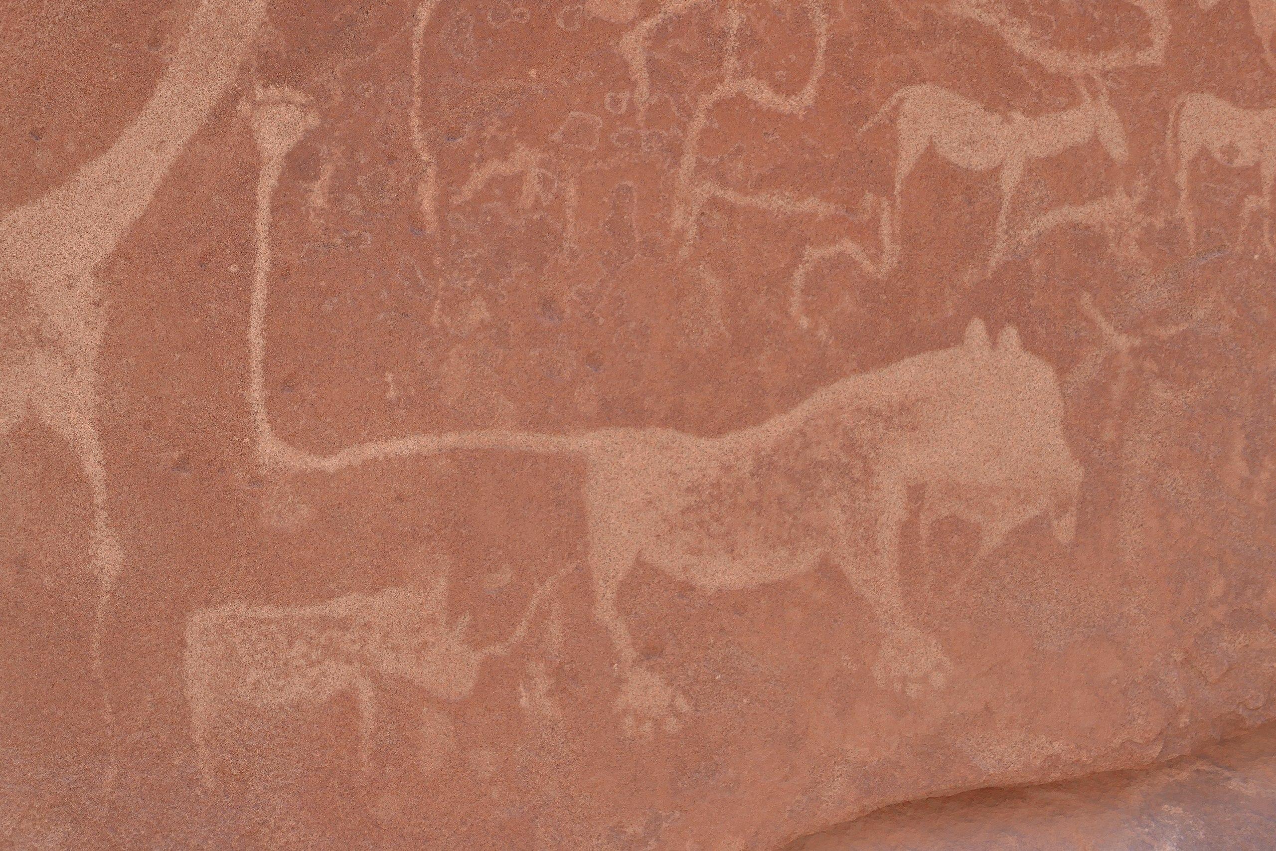 Namibie - Twyfelfontein, dessins rupestres