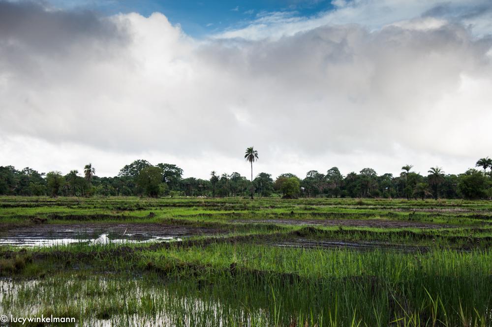 Sénégal - Agnak