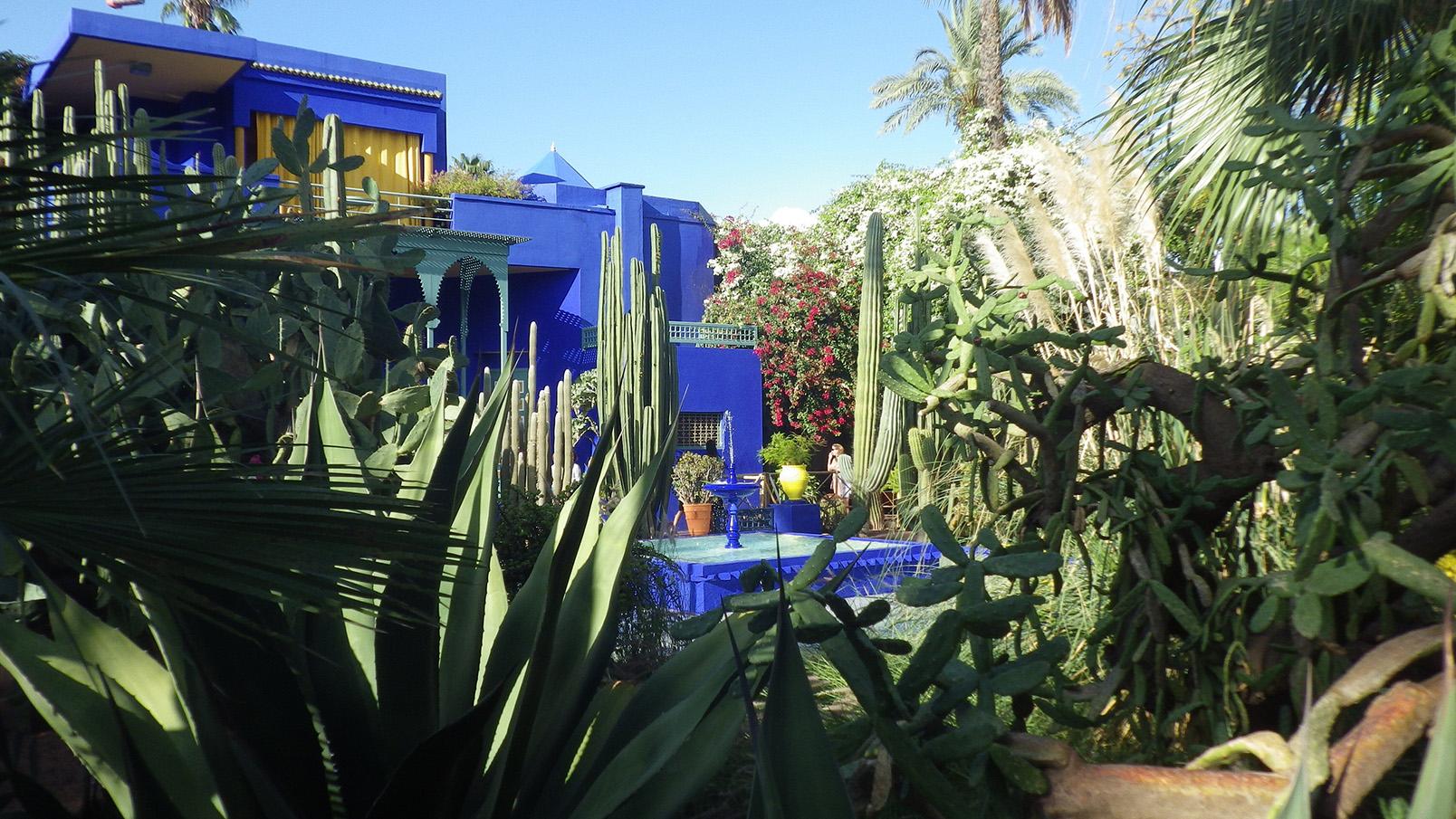 Maroc - Marrakech, jardin Majorelle (Gauthier Thonin)